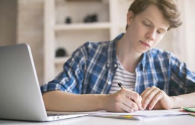 Write My Essay 24